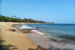 Τροπική παραλία με τους φοίνικες και το μπλε ουρανό στοκ εικόνα