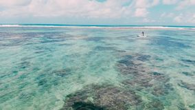 Τροπική παραλία με το τυρκουάζ ωκεάνιο νερό και αλιευτικό σκάφος στο Μπαλί, εναέρια άποψη απόθεμα βίντεο