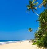 Τροπική παραλία στη Σρι Λάνκα, Στοκ Εικόνα