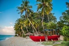Τροπική παραλία στις Μαλδίβες Τροπικός παράδεισος στις Μαλδίβες με τους φοίνικες στοκ φωτογραφίες