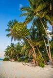 Τροπική παραλία στις Μαλδίβες Τροπικός παράδεισος στις Μαλδίβες με τους φοίνικες στοκ φωτογραφία με δικαίωμα ελεύθερης χρήσης