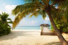 Τροπική παραλία στοκ φωτογραφία