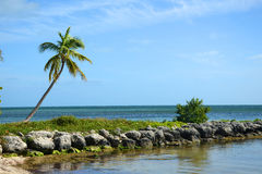 Τροπική παραλία, Key West Στοκ φωτογραφίες με δικαίωμα ελεύθερης χρήσης