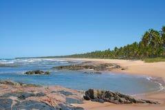 Τροπική παραλία σε Bahia, Βραζιλία Στοκ εικόνα με δικαίωμα ελεύθερης χρήσης