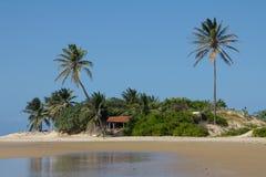 Τροπική παραλία στη Βραζιλία Στοκ Φωτογραφία