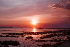 Τροπική παραλία στο όμορφο ηλιοβασίλεμα ενάντια ανασκόπησης μπλε σύννεφων πεδίων άσπρο σε wispy ουρανού φύσης χλόης πράσινο Στοκ Φωτογραφίες