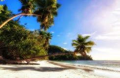 Τροπική παραλία Anse Takamaka του νησιού Mahe, Σεϋχέλλες Στοκ Εικόνες