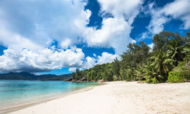 Τροπική παραλία Soleil Anse, νησί Mahe, Σεϋχέλλες Στοκ εικόνα με δικαίωμα ελεύθερης χρήσης