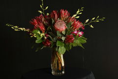 Τροπική ρύθμιση λουλουδιών Στοκ Φωτογραφίες