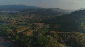 Τροπική ταϊλανδική cheo πτήση κηφήνων ηλιοβασιλέματος ζουγκλών πάρκων του τοπικού LAN μακροχρόνια εθνική, άγριοι δέντρο φύσης βου απόθεμα βίντεο