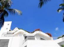 Τροπικοί βίλα, μπλε ουρανός και φοίνικες Στοκ Εικόνα