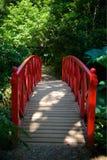 Τροπικοί κήποι Dorset UK Abbottbury Στοκ Φωτογραφίες