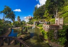 Τροπικοί κήπος και παλάτι Monte - Μαδέρα Πορτογαλία στοκ εικόνες