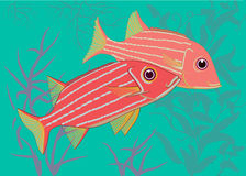 Τροπικοί ψάρι-στρατιώτες διανυσματική απεικόνιση