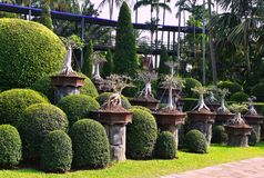 Τροπικός βοτανικός κήπος Nooch Nong Στοκ Εικόνες