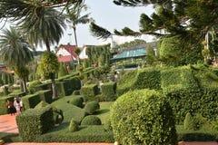 Τροπικός βοτανικός κήπος Nooch Nong Στοκ φωτογραφία με δικαίωμα ελεύθερης χρήσης