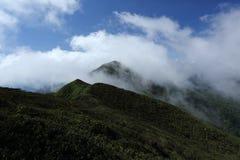 Τροπικός θόλος τροπικών δασών σειράς βουνών σε νότιο Thailan Στοκ εικόνες με δικαίωμα ελεύθερης χρήσης