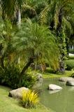 Τροπικός κήπος κοντά στη λίμνη Στοκ φωτογραφία με δικαίωμα ελεύθερης χρήσης