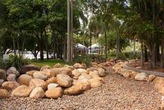 Τροπικός κήπος με τους φοίνικες και τους βράχους Στοκ Εικόνες