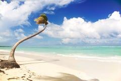 Τροπικός παράδεισος - άσπρη παραλία άμμων Στοκ Φωτογραφία