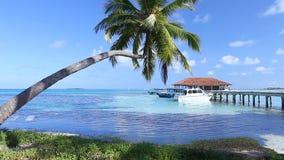 Τροπικός παράδεισος στις Μαλδίβες απόθεμα βίντεο