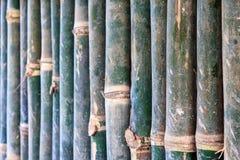 Τροπικός τοίχος μπαμπού Στοκ φωτογραφία με δικαίωμα ελεύθερης χρήσης