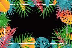 Τροπικός φοίνικας εγγράφου, πλαίσιο φύλλων monstera διανυσματική απεικόνιση