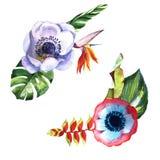 Τροπικός φοίνικας φύλλων της Χαβάης σε ένα ύφος watercolor που απομονώνεται ελεύθερη απεικόνιση δικαιώματος