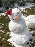 Τροπικός χιονάνθρωπος Στοκ Εικόνες