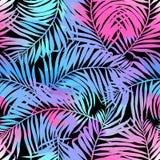 Τροπικό άνευ ραφής σχέδιο φοινικών στα χρώματα Στοκ φωτογραφία με δικαίωμα ελεύθερης χρήσης