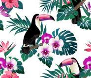 Τροπικό άνευ ραφής υπόβαθρο πουλιών, ορχιδεών και φύλλων φοινικών Στοκ εικόνα με δικαίωμα ελεύθερης χρήσης