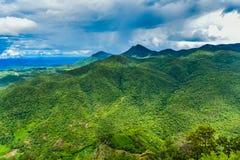 Τροπικό δάσος Ταϊλάνδη Στοκ εικόνα με δικαίωμα ελεύθερης χρήσης