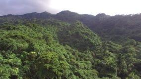 Τροπικό δάσος βουνών κορεσμένο με τα πλήρη αυξημένα δέντρα Εναέριος πυροβολισμός κηφήνων απόθεμα βίντεο