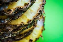 Τροπικό εσπεριδοειδές ο ανανάς που κόβεται στα δαχτυλίδια σε ένα πράσινο υπόβαθρο r Εξωτικός του καλοκαιριού στοκ εικόνες με δικαίωμα ελεύθερης χρήσης
