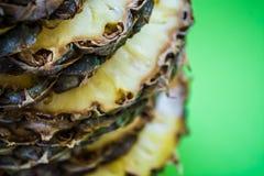 Τροπικό εσπεριδοειδές ο ανανάς που κόβεται στα δαχτυλίδια σε ένα πράσινο υπόβαθρο r Εξωτικός του καλοκαιριού στοκ φωτογραφίες