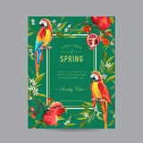 Τροπικό ζωηρόχρωμο πλαίσιο πουλιών, ροδιών και λουλουδιών παπαγάλων Στοκ Εικόνα