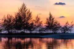Τροπικό ηλιοβασίλεμα πίσω από τα δέντρα filao στοκ φωτογραφίες