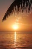 Τροπικό ηλιοβασίλεμα στον ωκεανό Στοκ Εικόνες