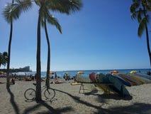 τροπικό διάνυσμα απεικόνισης της Χαβάης παραλιών Στοκ Φωτογραφίες