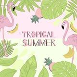 Τροπικό καλοκαίρι πλαισίων Πράσινα φύλλα, φλαμίγκο, μπανάνα, ανανάς απεικόνιση αποθεμάτων