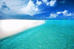 Τροπικό νησί με την αμμώδεις παραλία και τους φοίνικες Στοκ εικόνα με δικαίωμα ελεύθερης χρήσης