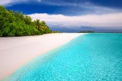 Τροπικό νησί με την αμμώδεις παραλία και τους φοίνικες Στοκ Εικόνες