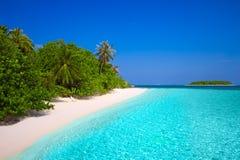 Τροπικό νησί με την αμμώδη παραλία με τους φοίνικες και το τυρκουάζ γ Στοκ Εικόνα