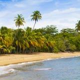 Τροπικό νησί στοκ φωτογραφία