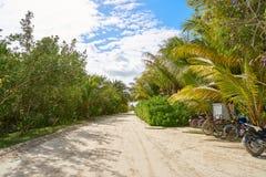 Τροπικό νησί Holbox σε Quintana Roo Μεξικό στοκ φωτογραφίες