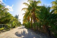 Τροπικό νησί Holbox σε Quintana Roo Μεξικό στοκ εικόνα