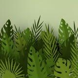 Τροπικό πλαίσιο φύλλων φοινικών εγγράφου Θερινό τροπικό πράσινο φύλλο Εξωτικό της Χαβάης φύλλωμα ζουγκλών Origami, υπόβαθρο καλοκ ελεύθερη απεικόνιση δικαιώματος
