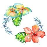 Τροπικό στεφάνι φοινίκων φύλλων της Χαβάης σε ένα ύφος watercolor ελεύθερη απεικόνιση δικαιώματος