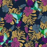 Τροπικό σχέδιο με τα κολίβρια, τα φύλλα φοινικών και hibiscus τα λουλούδια ελεύθερη απεικόνιση δικαιώματος