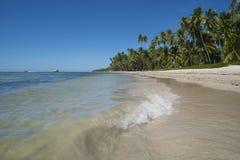 Τροπικό τοπίο ακτών παραλιών με τους φοίνικες στοκ φωτογραφία με δικαίωμα ελεύθερης χρήσης